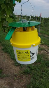 KS Dept of Ag insect trap 07-14-14 p2